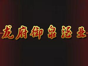 贵州龙府御泉酒业有限公司