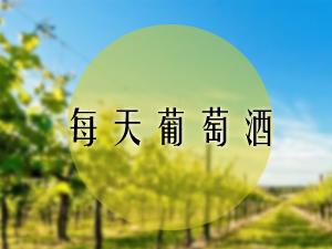 深圳每天葡萄酒有限公司