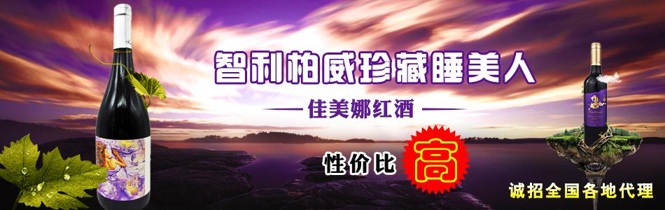 广州沃隆贸易有限公司