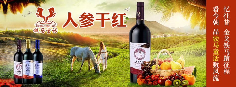 吉林省铁马商贸有限公司