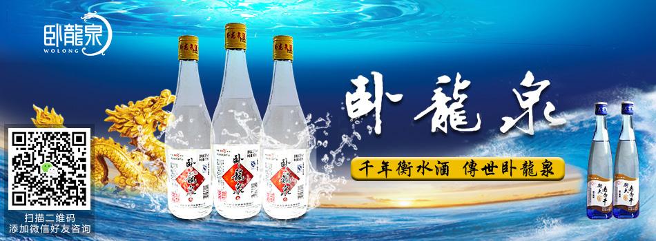 衡水衡大集团卧龙泉酒业