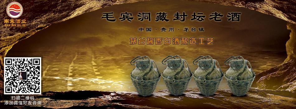 贵州省仁怀市茅台镇南宾酒业有限公司