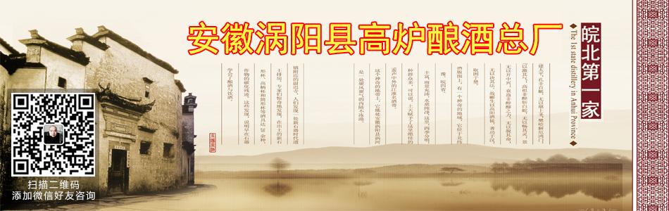 安徽涡阳县高炉酿酒总厂