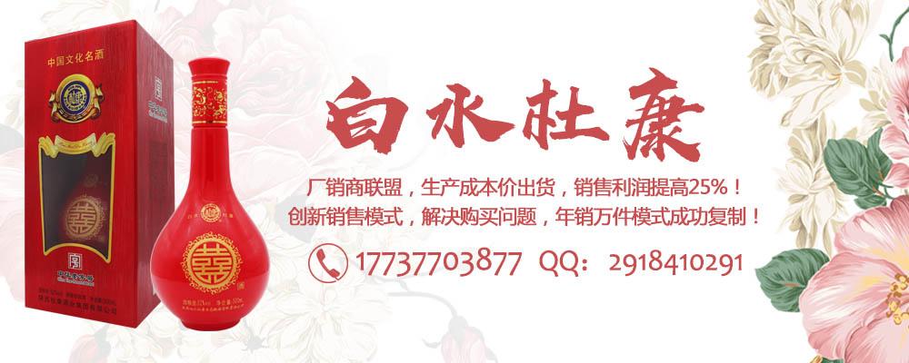 白水杜康(北京)销售有限公司