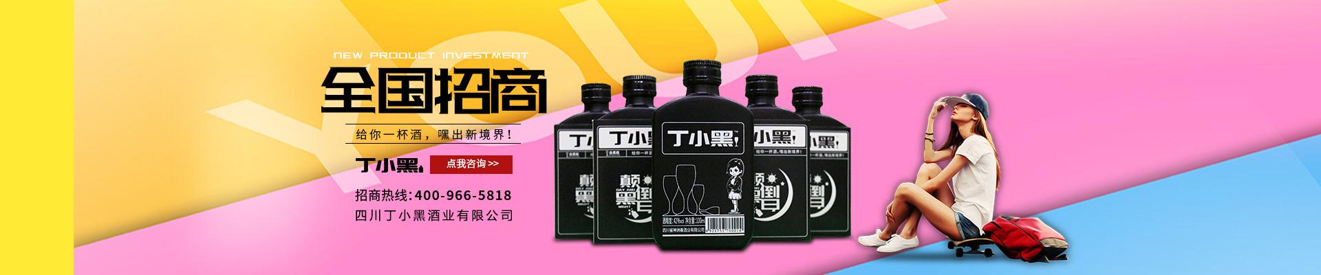 四川丁小黑酒业有限公司