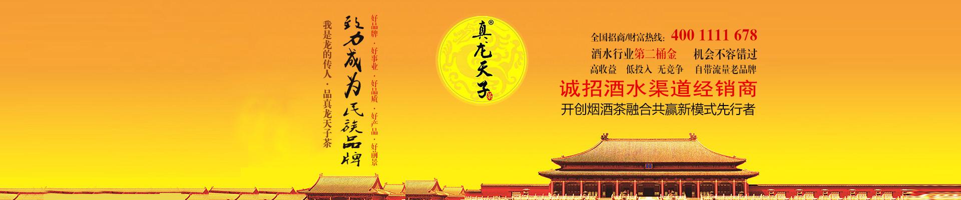 真龙天子茶全国运营中心
