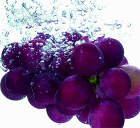 红葡萄酒与白葡萄酒的主要区别是什么?