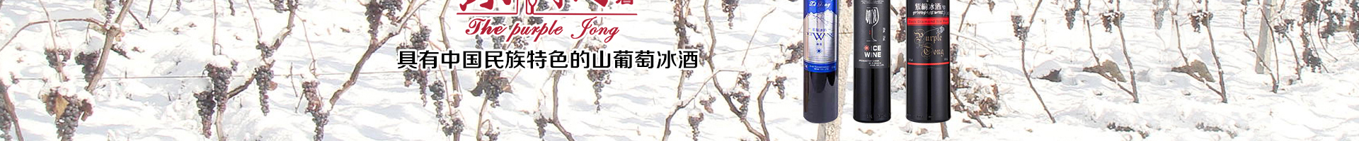 吉林紫桐酒业有限公司