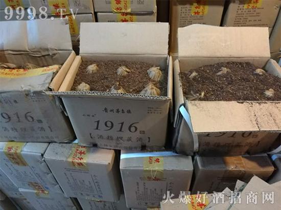 贵州小神女酒1916酒槽埋酒,全新上市,引领饮酒新风尚!