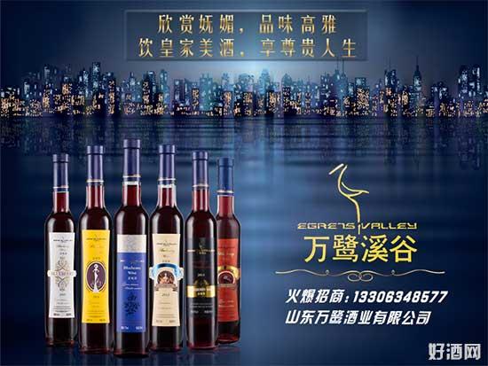 果酒代理选山东万鹭酒业,品质好、代理政策好!