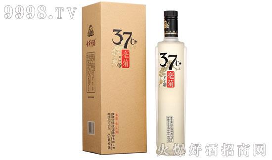 37°古井贡酒亳菊37℃ (+)价格是多少