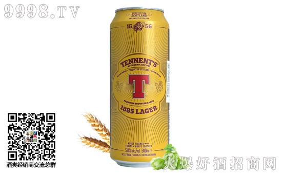 替牌啤酒听装500ml价格,贵吗?