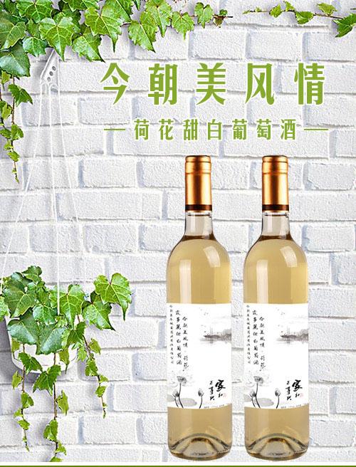 受全球欢迎的5款白中白香槟