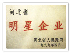 河北省明星企业