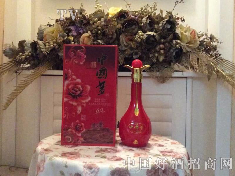 江苏洋河中国梦酒红60