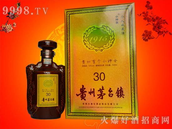 2016第十三届湖南糖酒会贵州小神女酒业欢迎您的莅临!