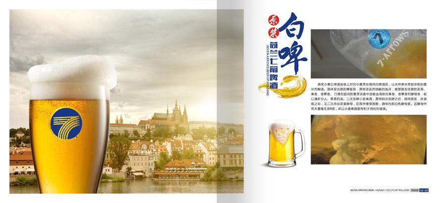 荷兰七箭啤酒(湖南)有限公司