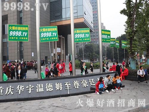 2017重庆全国秋季糖酒会,好酒网全力做好宣传