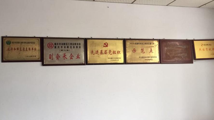 重庆市山公主保健食品有限公司