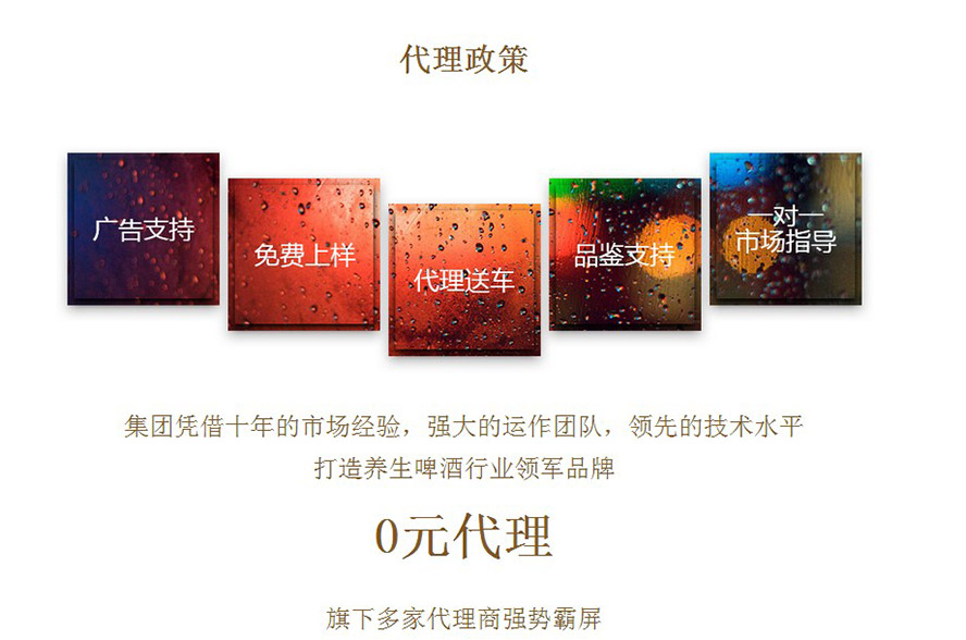 安徽宝金龙酒业有限公司