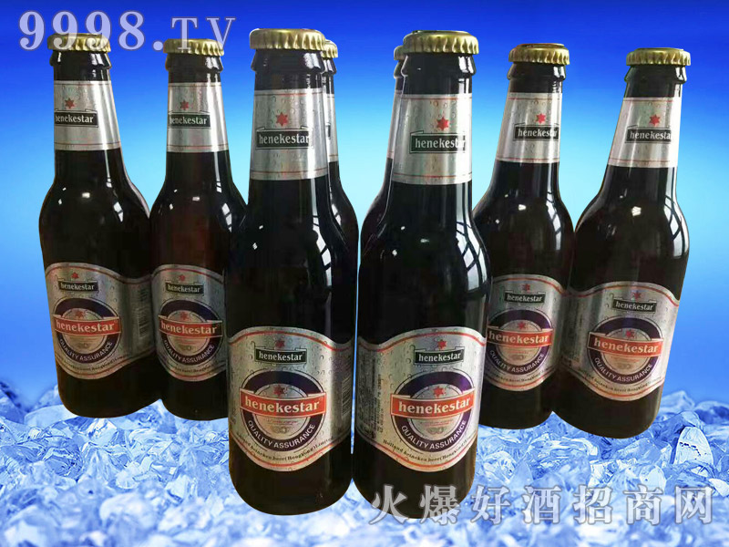 喜力之星啤酒(瓶装组合)
