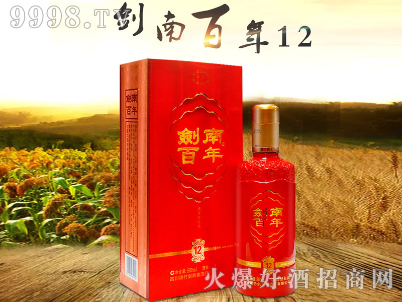 剑南百年酒12