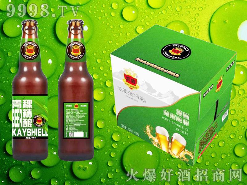 青稞精酿啤酒500mlx12