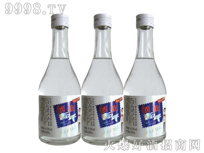 创业青年酒300ml系列