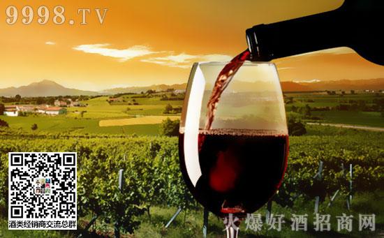 """罗讷河谷""""五站式""""葡萄酒产区旅游攻略"""