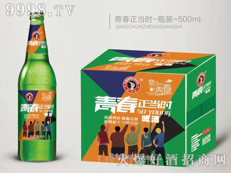 青春正当时啤酒绿瓶500ml