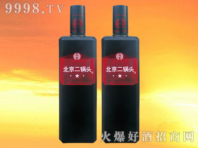 皇城门北京二锅头酒42°500ml×12(方瓶)