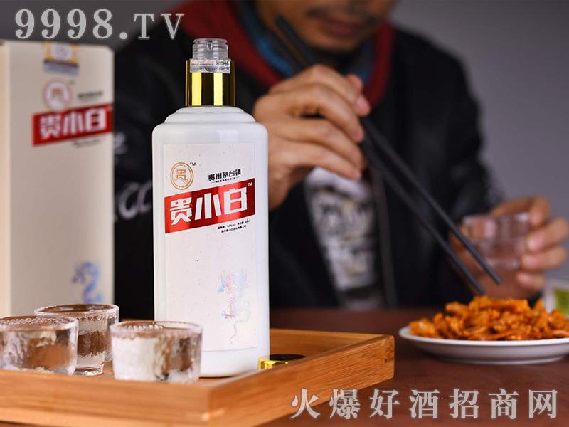 贵小白龙酒(白瓶)