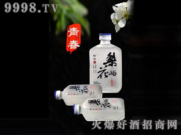 骏慕青春小酒48°125ml