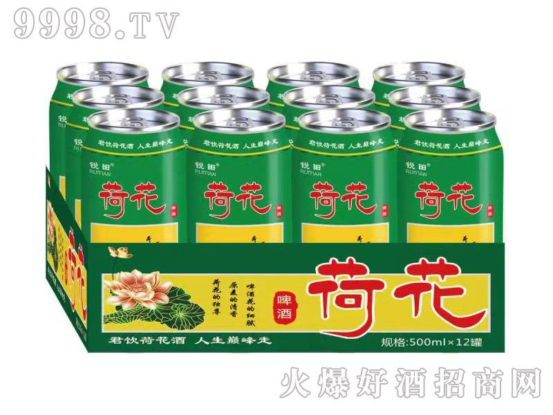 锐田荷花啤酒500ml半托