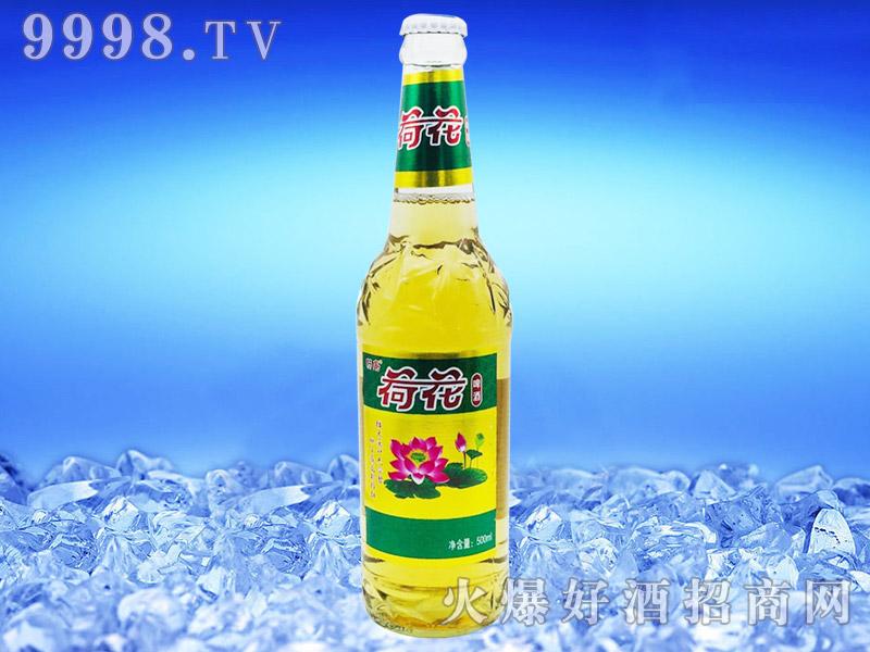 畅岛荷花啤酒500ml×12瓶