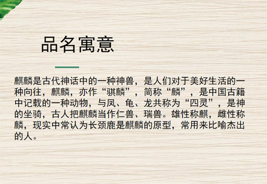 山东锦上添花国际贸易有限公司