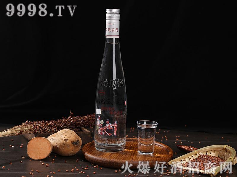 地瓜烧酒瓶浓香型白酒【46°500ml】