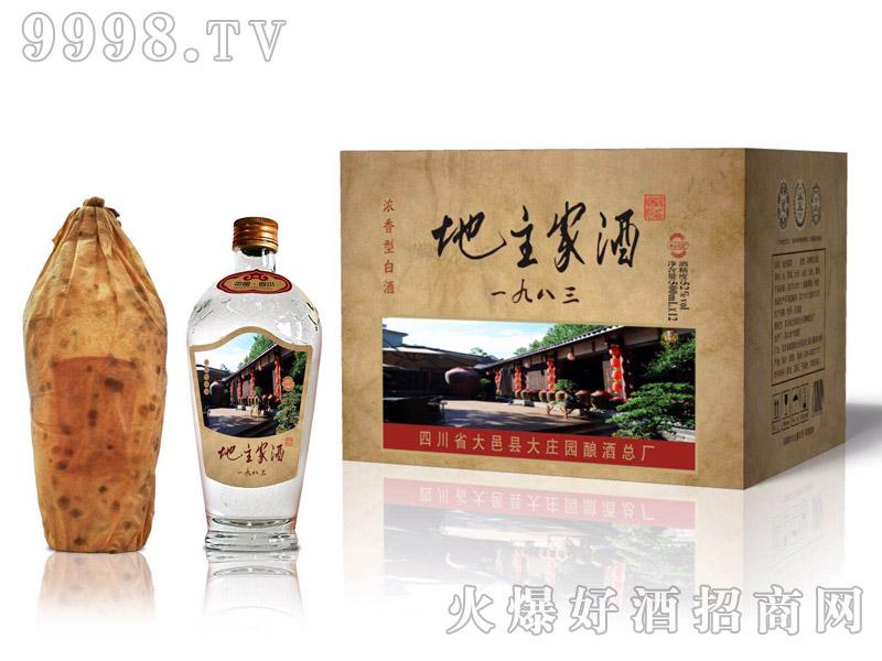 地主家酒五粮瓶42°52°500ml×12浓香型白酒