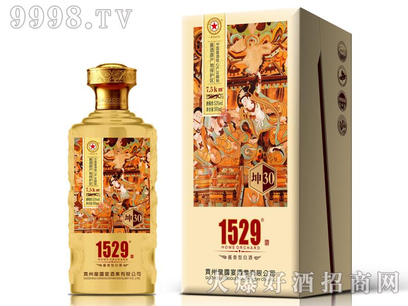 龙国宴坤酒30酱香型白酒【53°500ml】