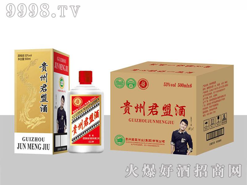 贵州君盟酒酱香型【53度500ml】