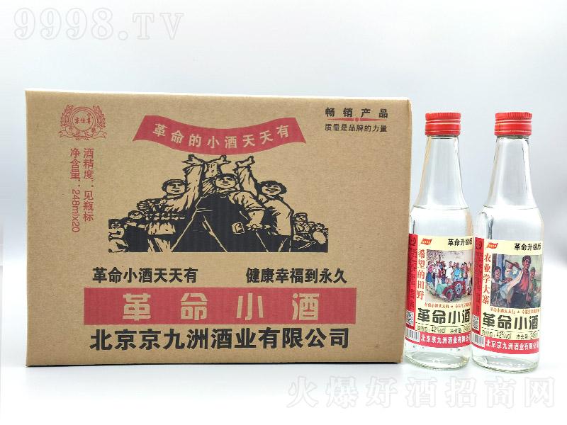 京仕尊革命小酒浓香型白酒【42度248ml】
