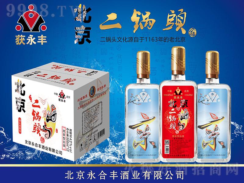 获永丰北京二锅头酒方瓶浓香型白酒【42°500ml】