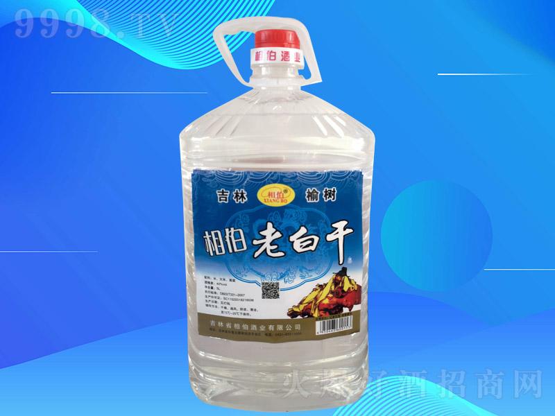 相伯老白干酒002【40度5L×4桶】