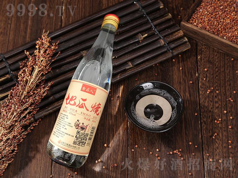 勿求人地瓜烧酒 浓香型白酒【42° 480ml】