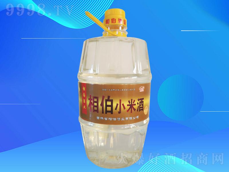 相伯小米酒T4L006 浓香型白酒【42度 4L×4桶】