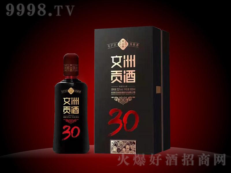 文洲贡酒(臻30)